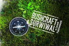 Program pilotażowy bushcraft & survival